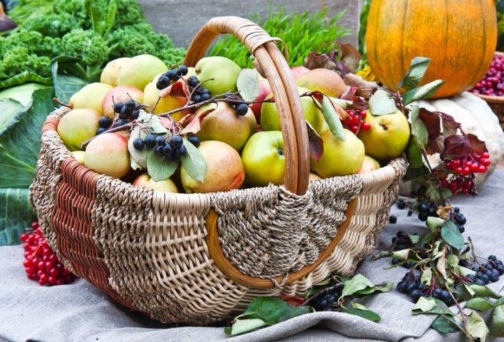 harvest-fruit